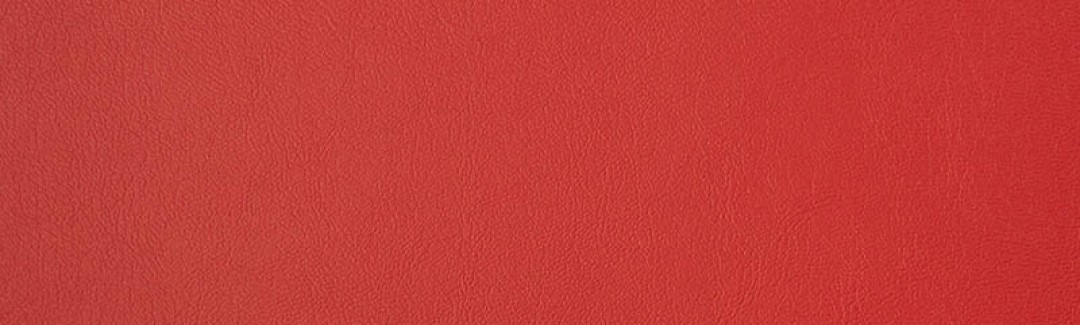 Capriccio Logo Red 10200-0016 Detailed View