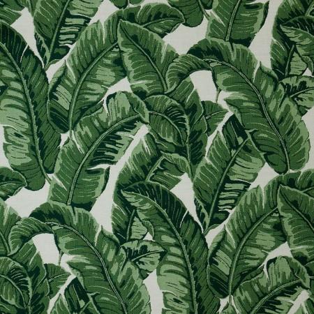 Tropics Jungle 145214-0000