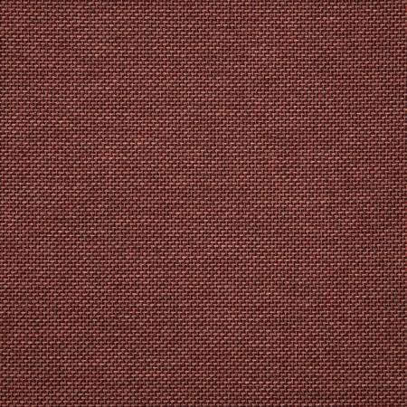 Essential Russet 16005-0010