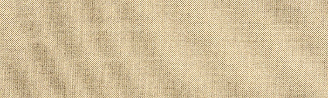 Meridian Wren (Zoomed)