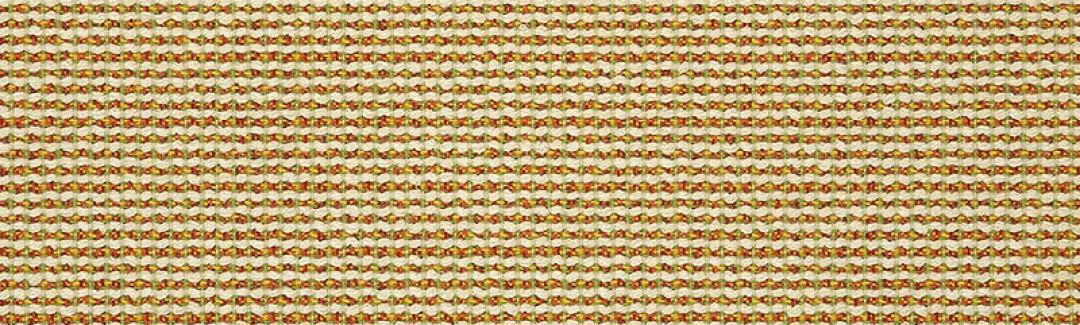 Hybrid Citrus 42076-0000 Detailed View