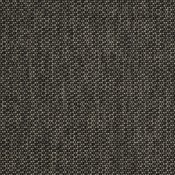 Tailored Coal 42082-0005 Coordinare