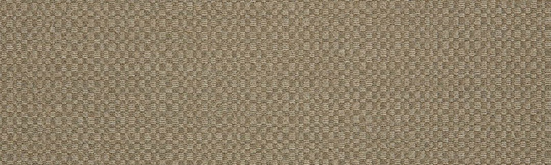Action Taupe (Zoomed)