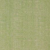 Zara Texture - Kiwi W80002 تنسيق الألوان