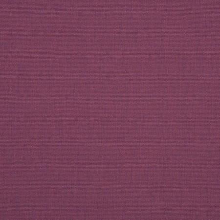 Hyacinth  4663-0000