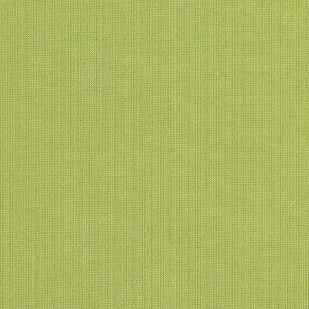Spectrum Kiwi 48023-0000