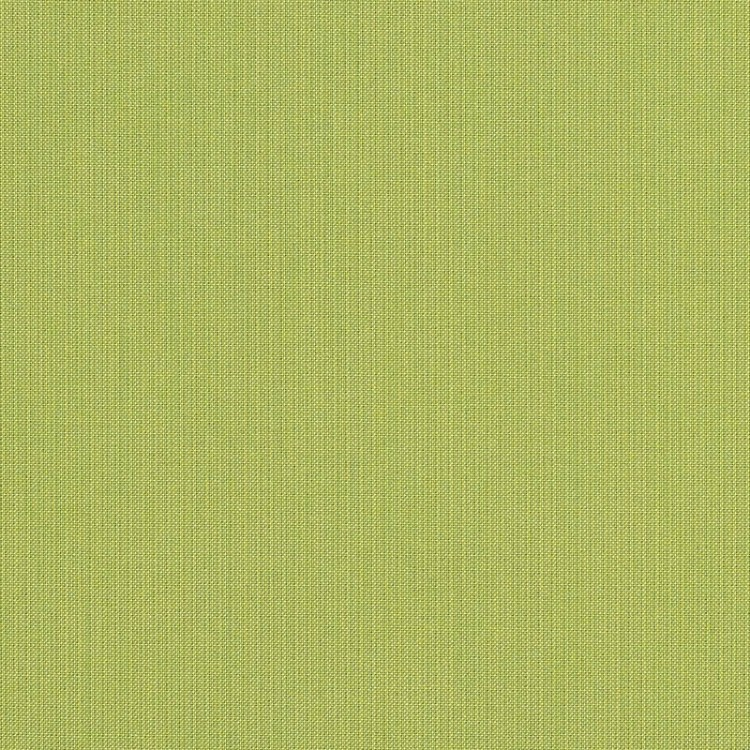 Spectrum Kiwi
