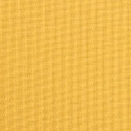 Spectrum Daffodil 48024-0000