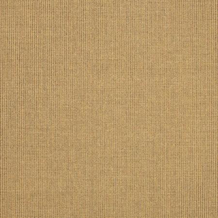 Spectrum Sesame 48084-0000