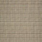 Shangrila Dove 50171-0000 Colorway