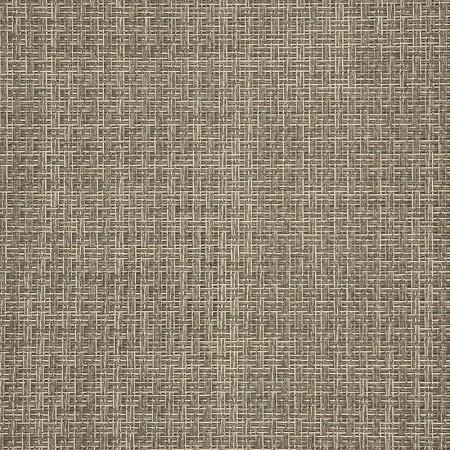 Reed Raffia 50199-0001