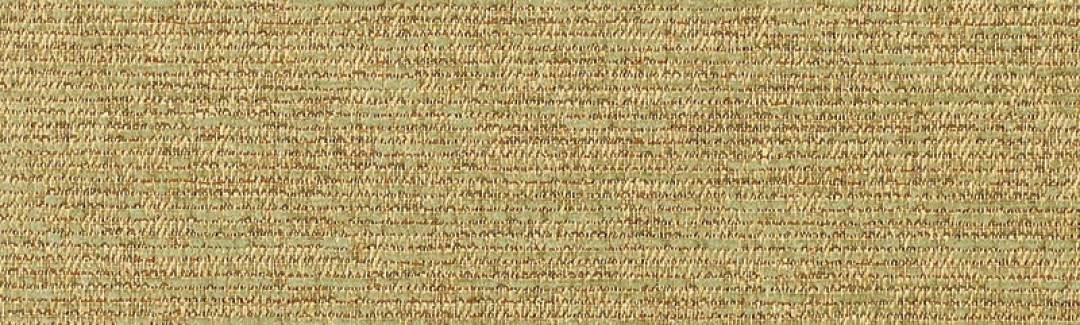 Corcovado Lichen 5312-0001 Detailed View