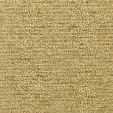 Corcovado Lichen 5312-0001