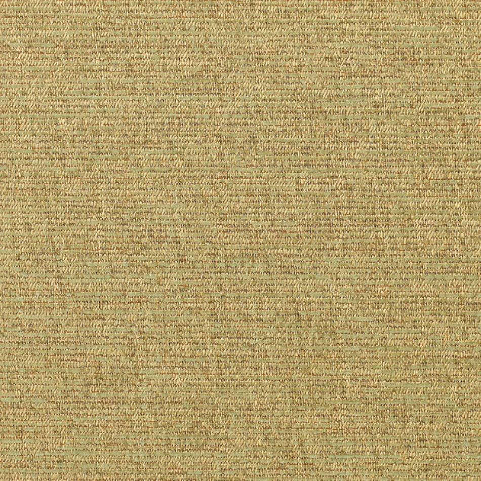 Corcovado Lichen 5312-0001 Larger View
