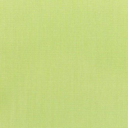 Canvas Parrot 5405-0000