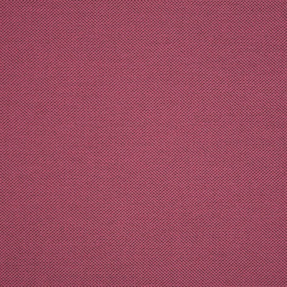 Fiji Flamingo 62372 Xem hình lớn