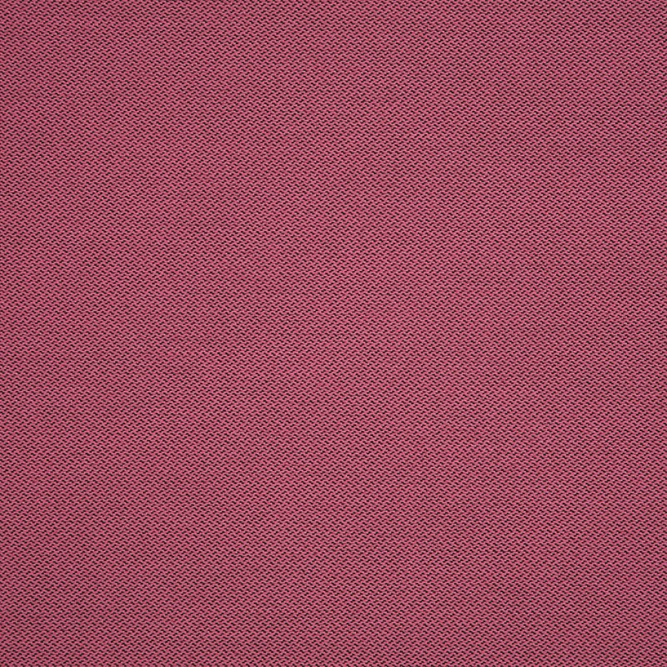 Fiji Flamingo 62372 拡大表示