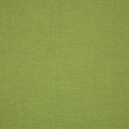 Fiji Spring 62375