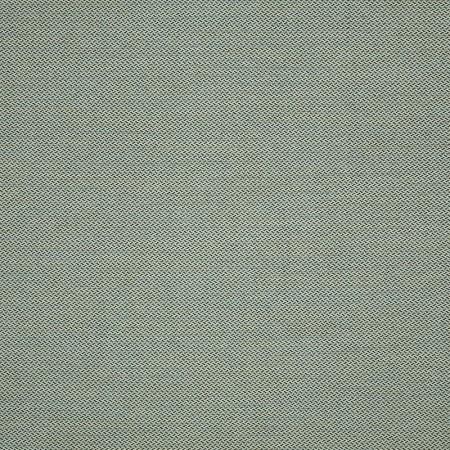 Fiji Mist 62388