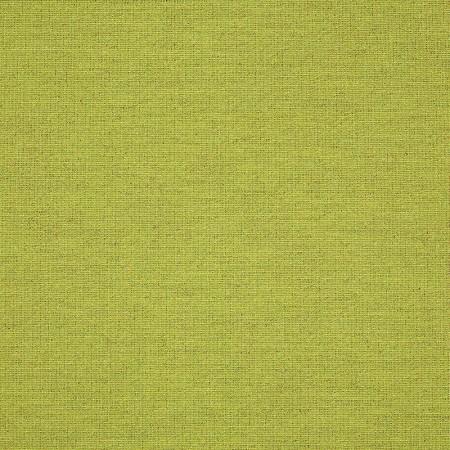 Aspire Moss SUNC102-03