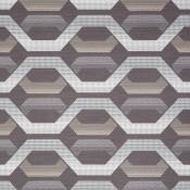 Hive 21 6066-21 Kết hợp màu sắc