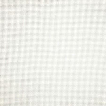 Basis White 6718-0001