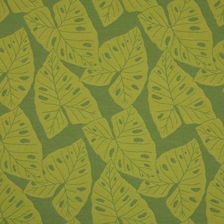 Radiant Kiwi 69008-0005