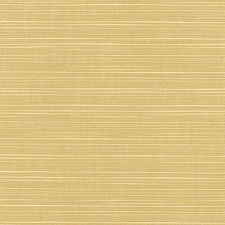 Dupione Bamboo 8013-0000