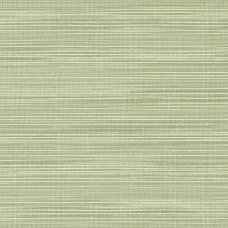 Dupione Aloe 8068-0000