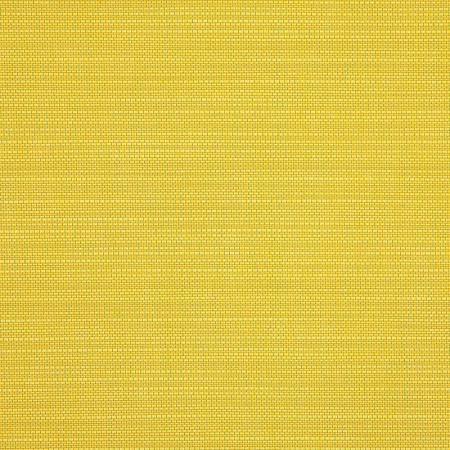 Echo Citron 8079-0000