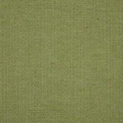Dune Cricket K2047/3 تنسيق الألوان