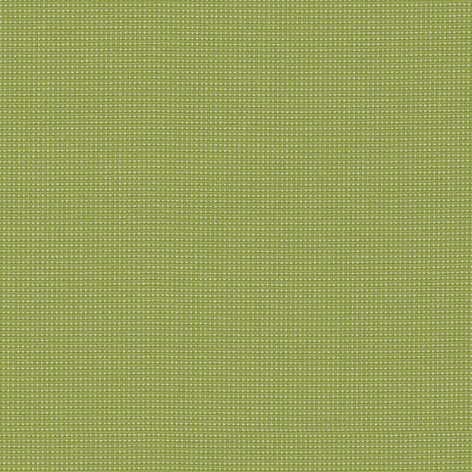 Bengali Spinach BEN 10106 140 Larger View