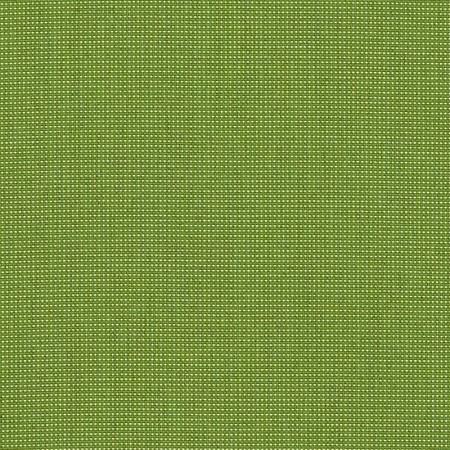 Bengali Bamboo BEN 10167 140