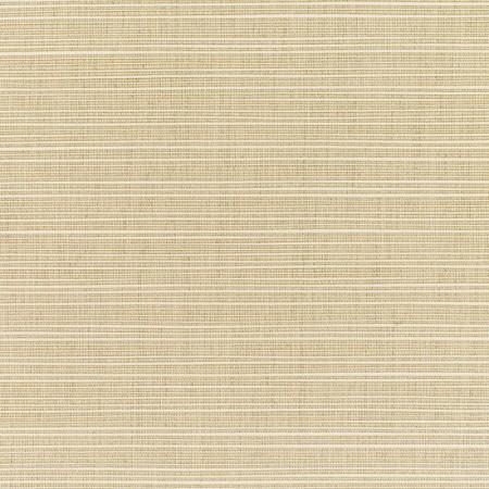Dupione Sand DUP 8011 140