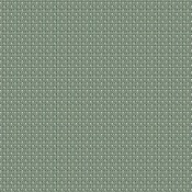 Mild Algae MILD 2107 300 Esquema de cores