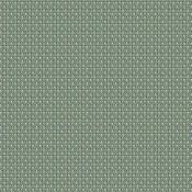 Mild Algae MILD 2107 300 تنسيق الألوان