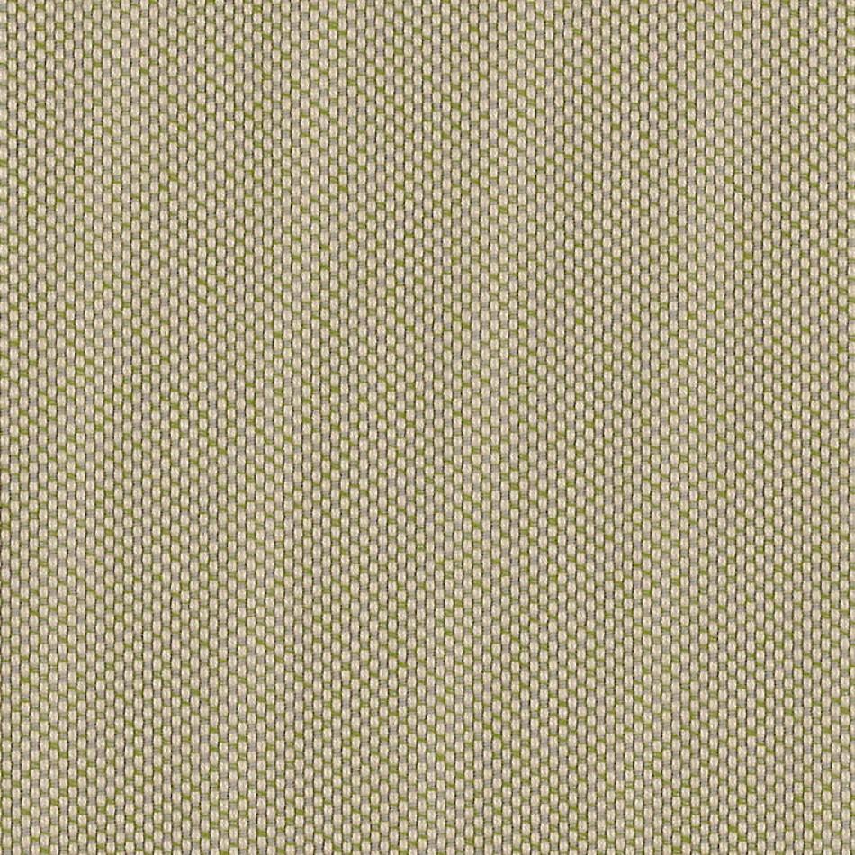 Robben Lichen ROB R002 140 大图