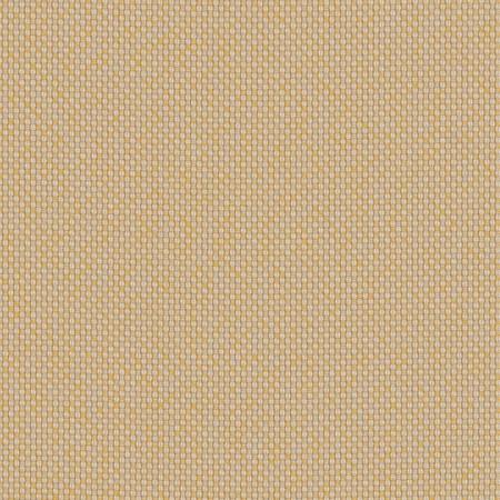 Robben Wheat ROB R003 140