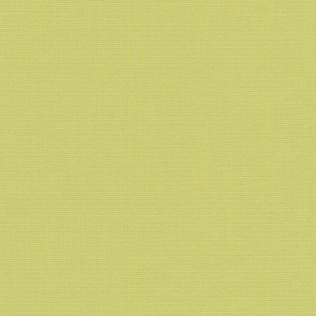 Canvas Lime SJA 3936 137