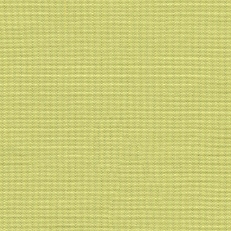 Canvas Lime SJA 3936 137 Vue agrandie
