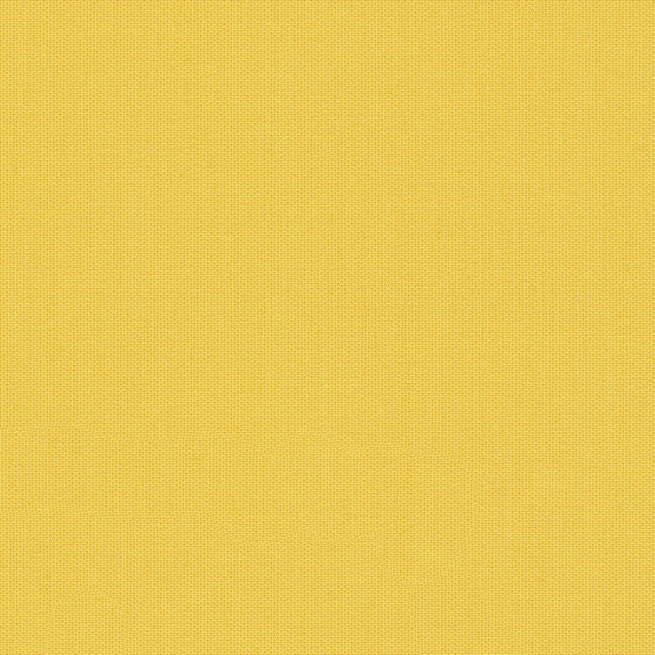 Canvas Lemon SJA 3937 137 มุมมองที่ใหญ่ขึ้น