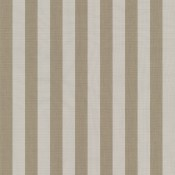 Yacht Stripe Maxim Beige SJA 5674 137 Colorway