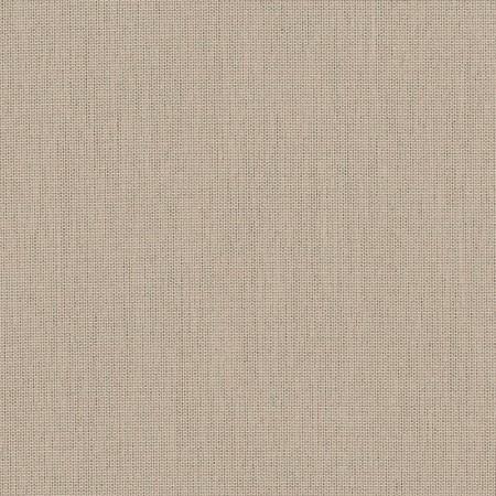 Papyrus SJA P055 137