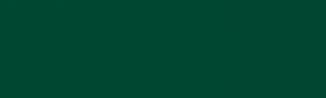 Forest Green SUN 5040 120 عرض تفصيلي