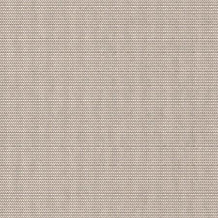 Velum Beechwood VLM 2026 300