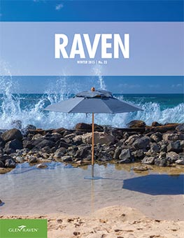 Raven - Issue 23