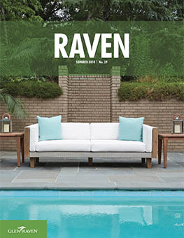 Raven - Issue 29